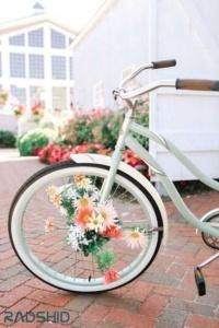 پیدا کردن دوچرخه